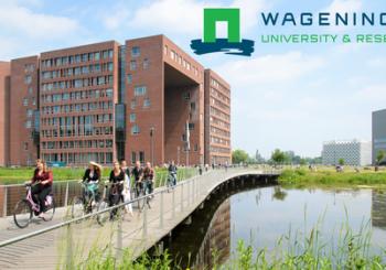 Internal dissemination in Wageningen University (Netherlands)